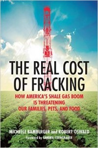 "Book cover for ""The Real Cost of Fracking"""