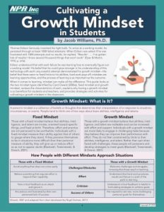 Cultivating a Growth Mindset in Students